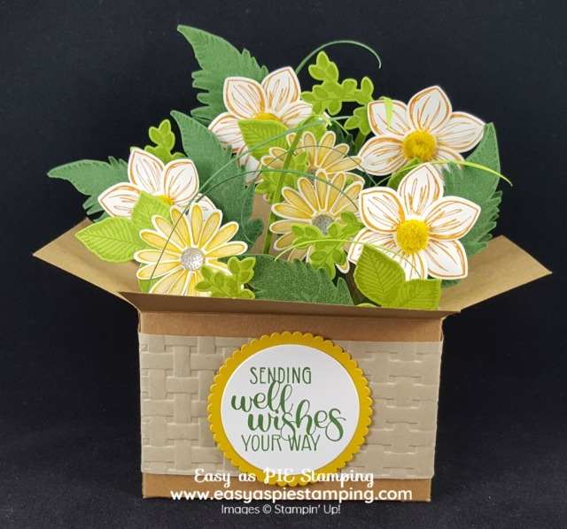 Daisy Lane Pop-up Box